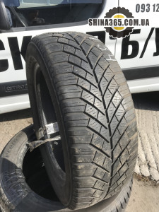 Continental ContiWinterContact TS830 205/55R16 ЗИМА ПАРА